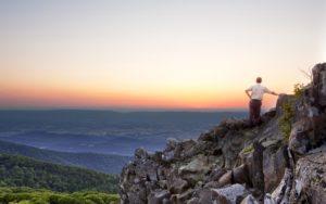 Homepage - Fieldale Insurance Virginia View